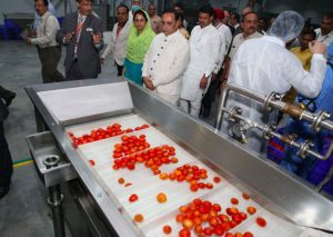 Gujarat's 1st Mega Food Park Launched in Surat, inaugurated by Harsimrat Kaur Badal