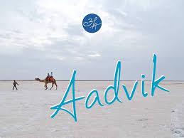 Aadvik Foods becomes First Indian Company to process, brand, educate and market Camel Milk in the Country